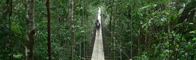 Panama island, Isla Palenque